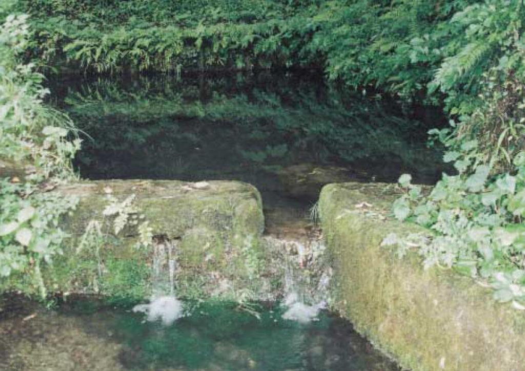 大森町鹿島神社不動尊の泉